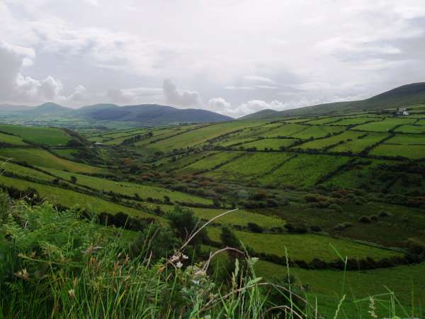 Dingle Landscape